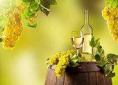 stock photo of keg  - Detail of wine with keg on vineyard - JPG