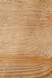 picture of uncolored  - Rough uncolored wooden surface closeup background texture - JPG