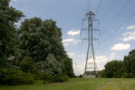 stock photo of power lines  - A view of high power lines in an area surrounded by trees - JPG