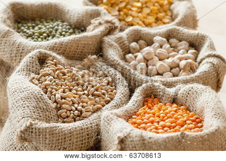 Bags With Wheat, Chick Peas, Red Lentils And Green Mung