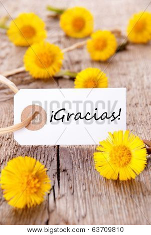 Yellow Flowers With Gracias