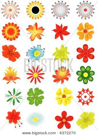 Collection of flowers for design