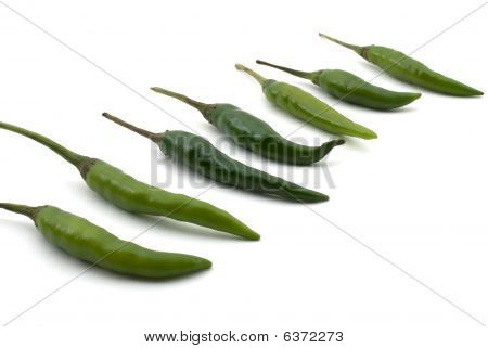 Hot Chilis Pepper - Indian Chili Peppers In A Row Isolated On White Background