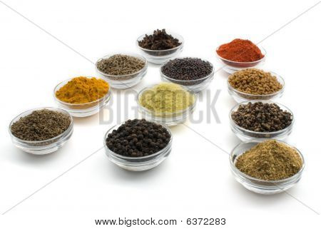 Indian Spices - Eleven Commonly Used Spices Isolated On White Background