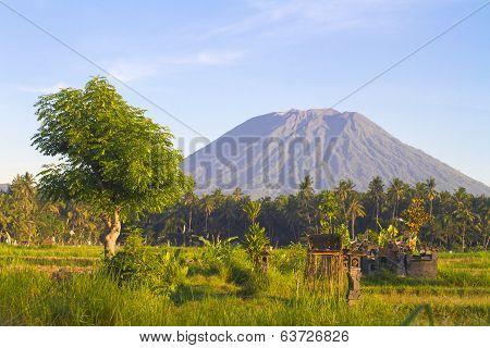 Mt. Agung, Amed, Bali.