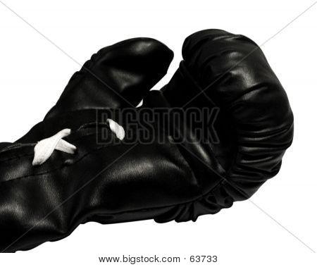 Box Glove Open Hand