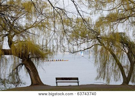 Bench At The Lake