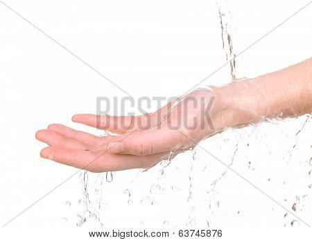 Human hand with water splashing on them isolated on white