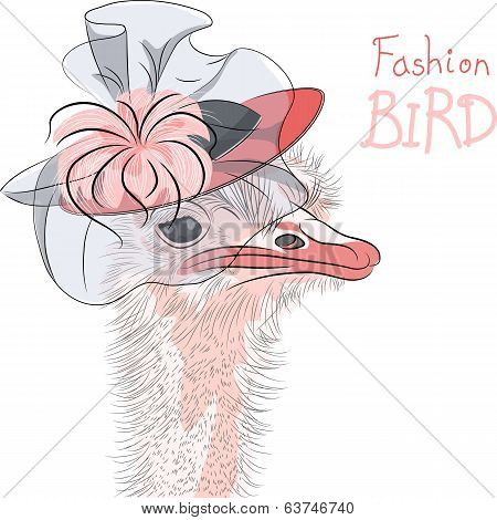 Vector Funny Fashion Ostrich Bird In A Beautiful Hat