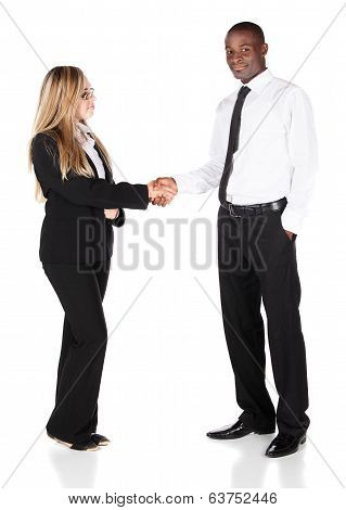 Multiracial Business People