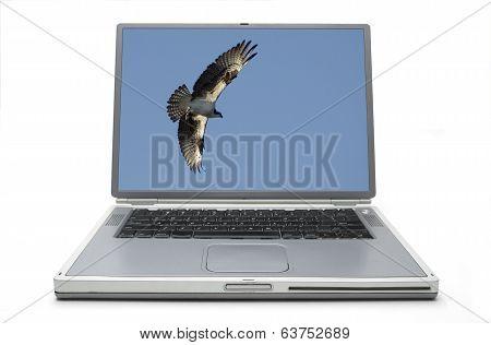 Laptop Concept Freedom