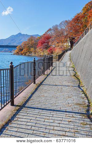 Walking Course Of Lake Kawaguchi (kawaguchiko) At Fujikawaguchiko In Japan