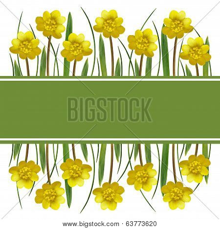 Yellow Spring Flowers And Grass