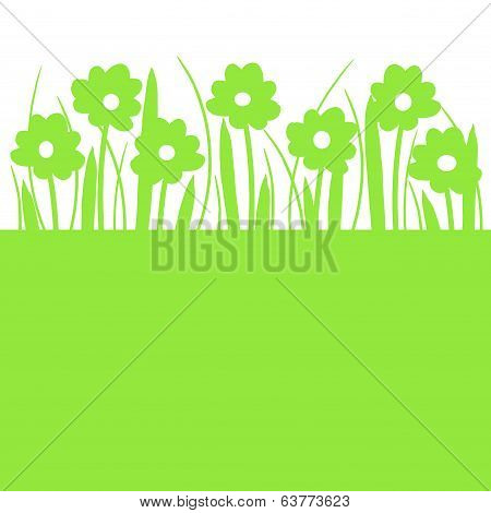 Spring Flowers And Grass