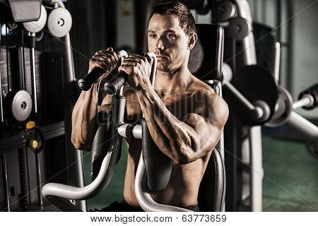 Male Bodybuilder Doing Workout