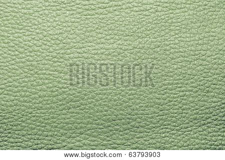 Abstract Painted Textures Of Skin Green Color