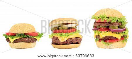 Three appetizing hamburgers.