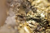 stock photo of bronze silver gold platinum  - Abstract background from a Crystal mineral. Extreme closeup. Macro