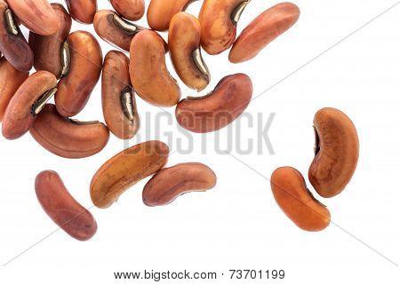 Yardlong Bean Seeds Isolated On White Background.