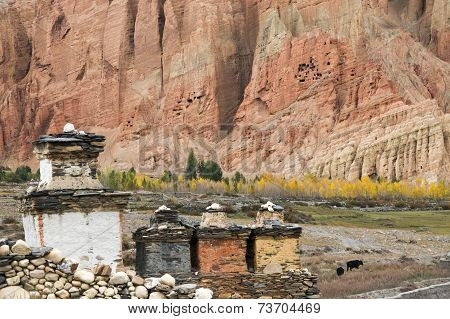 Shortens, Yellow Trees And Red Cliff In Dahkmar Village, Mustang