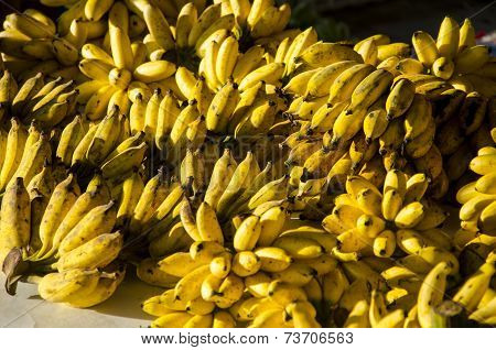 A lot of banana fruit background