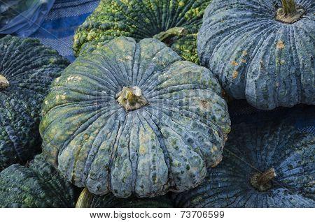 A lot of pumpkin fruit background