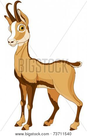 Cartoon illustration of Chamois (Rupicapra)