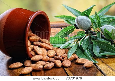 Group Of Almonds On Wooden Rustic Table