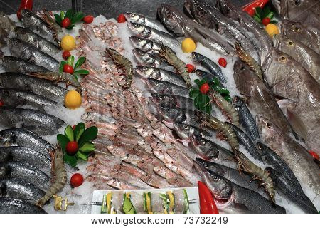 Fresh Fishes On The Grocery Store Counter