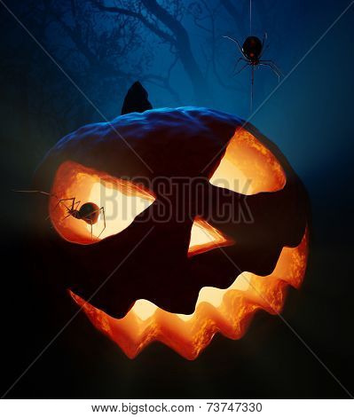 Halloween pumpkin  ( jack o'lantern ) with spiders in the woods
