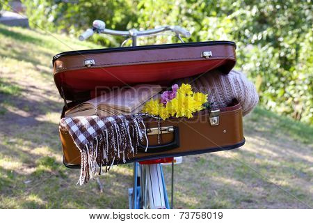 Bicycle and half open suitcase on it in shadow in park