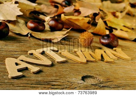 wooden letters forming the word autumn and some chestnuts and autumn leaves on a weathered wooden background