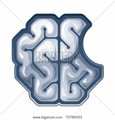 Vector bitten brain. Top view