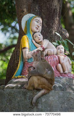 Monkey Next To Statue Madonna And Children