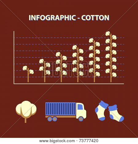 Infographic With Graph Of Growth Production Cotton