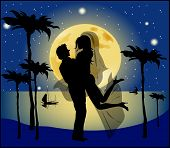 pic of night gown  - Silhouette of bride and groom background of the full moon - JPG