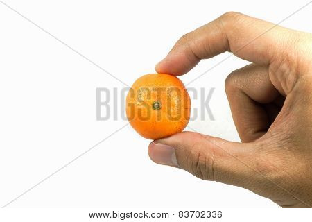 Hand Holding Orange On Isolated Background