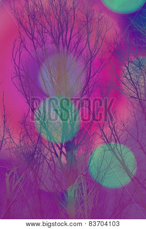 Artistic Background With Bare Trees And Colorful Bokeh