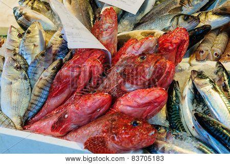 Fish Market, Venice