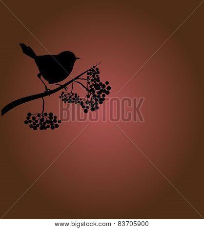 Bird With Rowan-tree