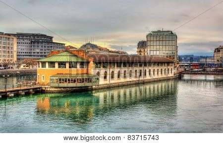 Island On The Lake In Geneva, Switzerland