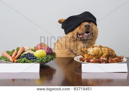 Blindfold Taste Game With Dog