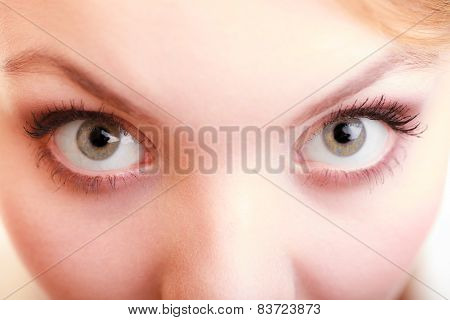 Part Of Face Female Eyes. Blonde Girl Wide Eyed.