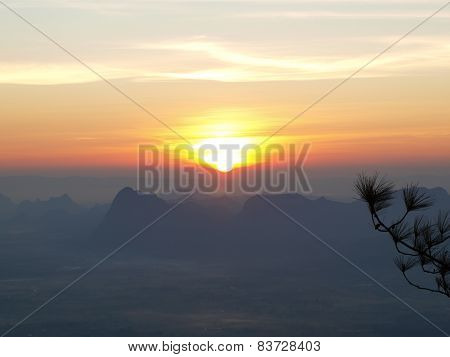 Wonderful sunrise with silhouettes of tree