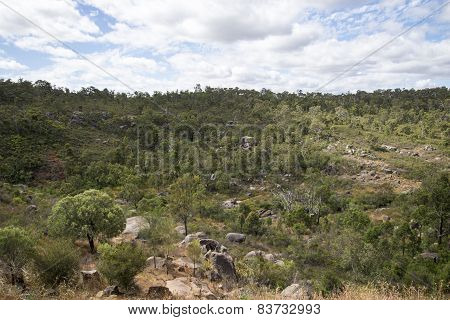 Spectacular forest landscape in John Forrest National Park
