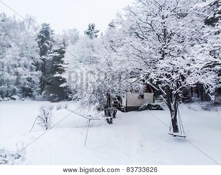 Snowstorm In Park, Winter Landscape