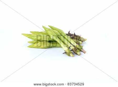 Fresh Lemon Lily Or Chinese Daylily On White Background