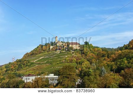 Burg Hornberg On Neckar River,germany