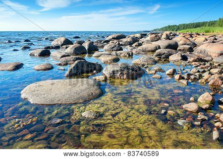 Coast Of Baltic Sea. Estonia