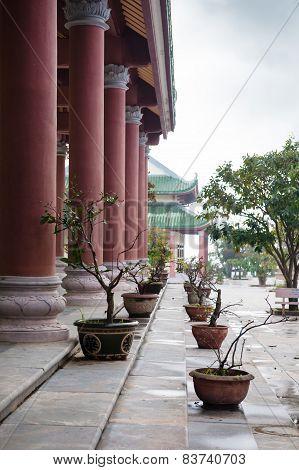 Bonsai In Linh Ung Pagoda Vietnam Danang